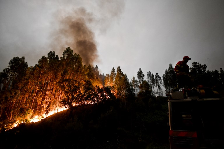 Erdőtűz Portugáliában: a több tucat halott nagyrészét az autójában érték el a lángok