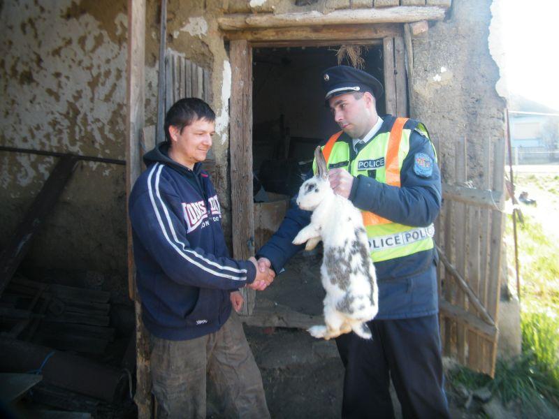Elloptak két húsvéti nyulat Tiszabercelen