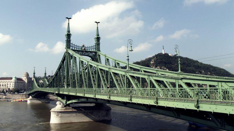 A Dunába esett egy férfi a Szabadság hídnál