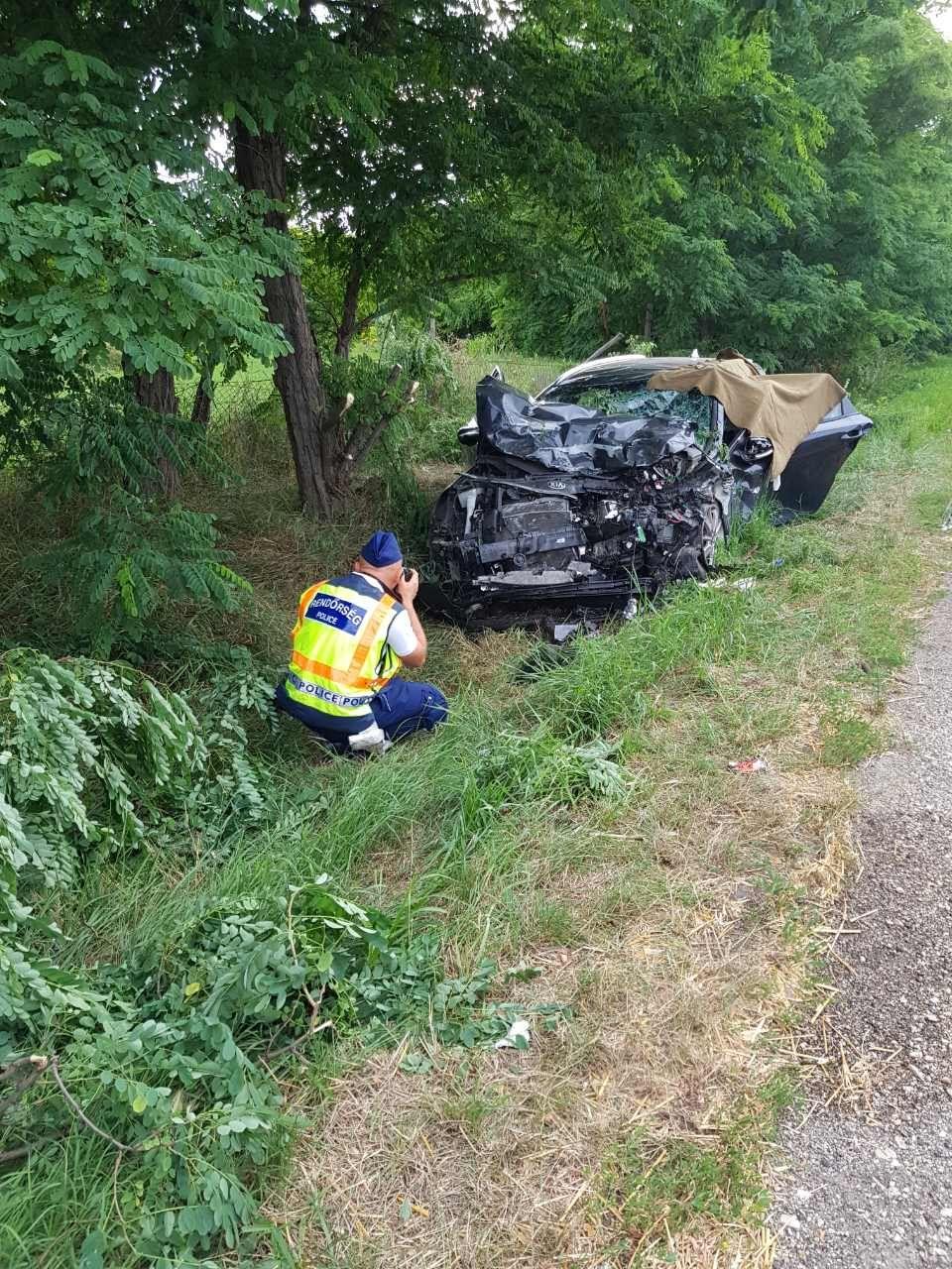 Két ember szörnyethalt egy balesetben a 442-es úton