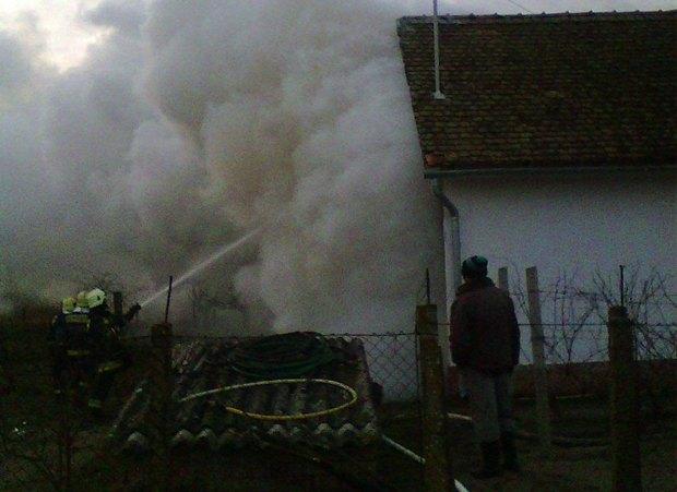 Nem nézhette a Shreket a gajgonyai néni – felrobbantotta a házat