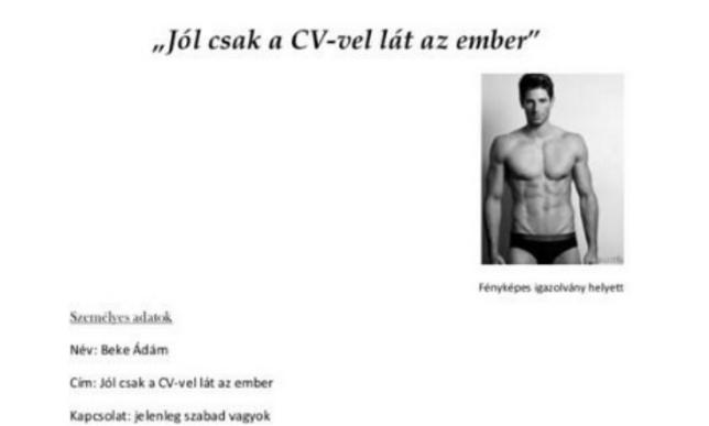 önéletrajz vicces Vicces önéletrajzot írt, ezen röhög a magyar inter  Propeller önéletrajz vicces