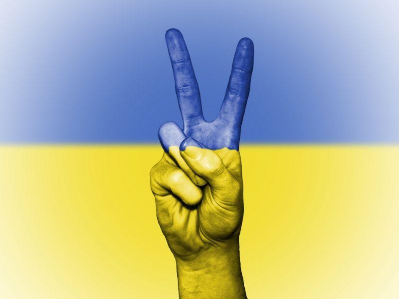Az ukrán külügyminiszter szerint országa szavatolja a kisebbségek anyanyelv-használatát