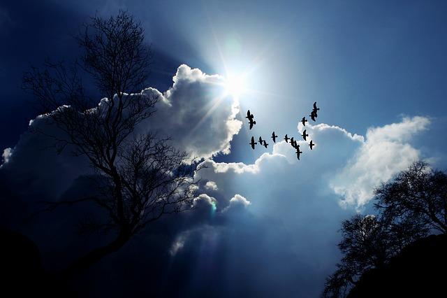 Délutánra elúsznak a fejünk fölül a felhők