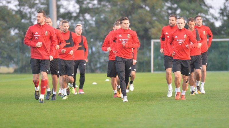 """""""Néhány játékosnak le kellett üvölteni a fejét"""" – ezt várja a magyar válogatottól Costa Rica ellen az ideiglenes kapitány"""