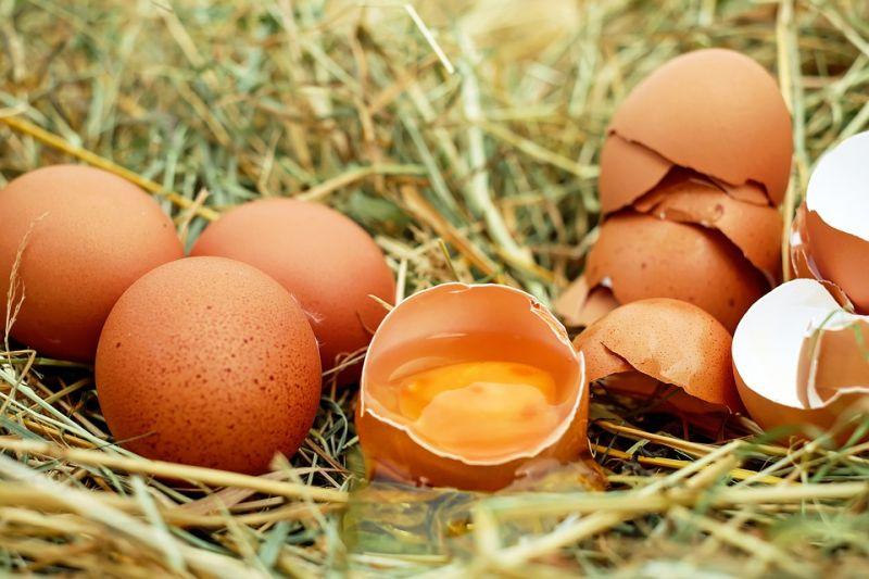 Ezért nőtt a tojás ára ennyire durván