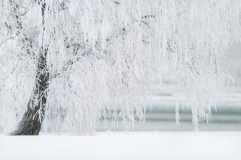 Havazással tér vissza az igazi tél