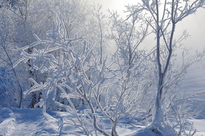 Akár két centis hó is eshet az ország középső részén