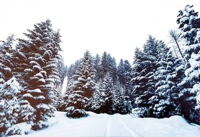 Délutánra elállhat a havazás az országban