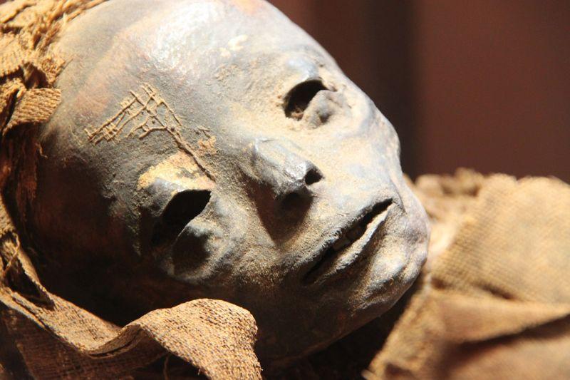 Évekig feküdt a kivárdai lakásban a gyilkos kisvárdai exzsaru múmiája