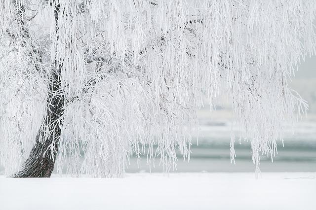 Ez vár ránk hétfőn – a hó mellé viharos szél is jön