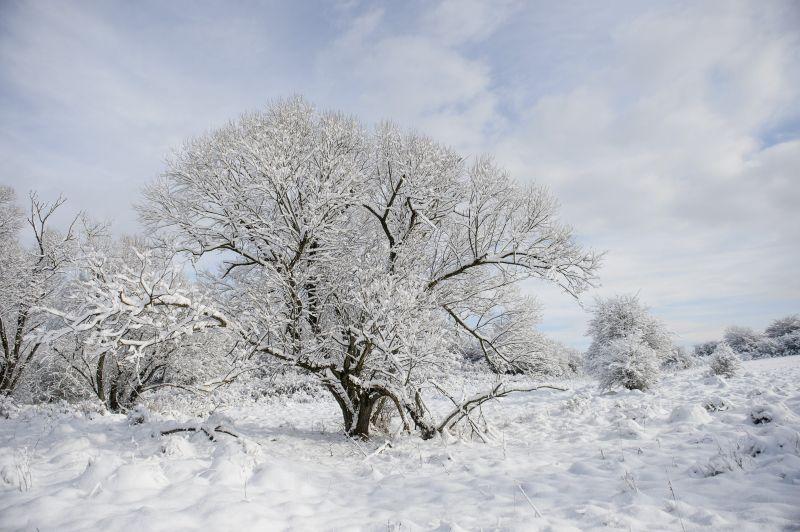 Jelentős mennyiségű hó hullhat a jövő héten – itt az előrejelzés
