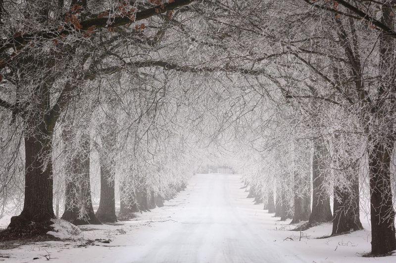 Rettegve nézzük az egy hetes előrejelzést: ez az időjárási horror vár ránk márciusig