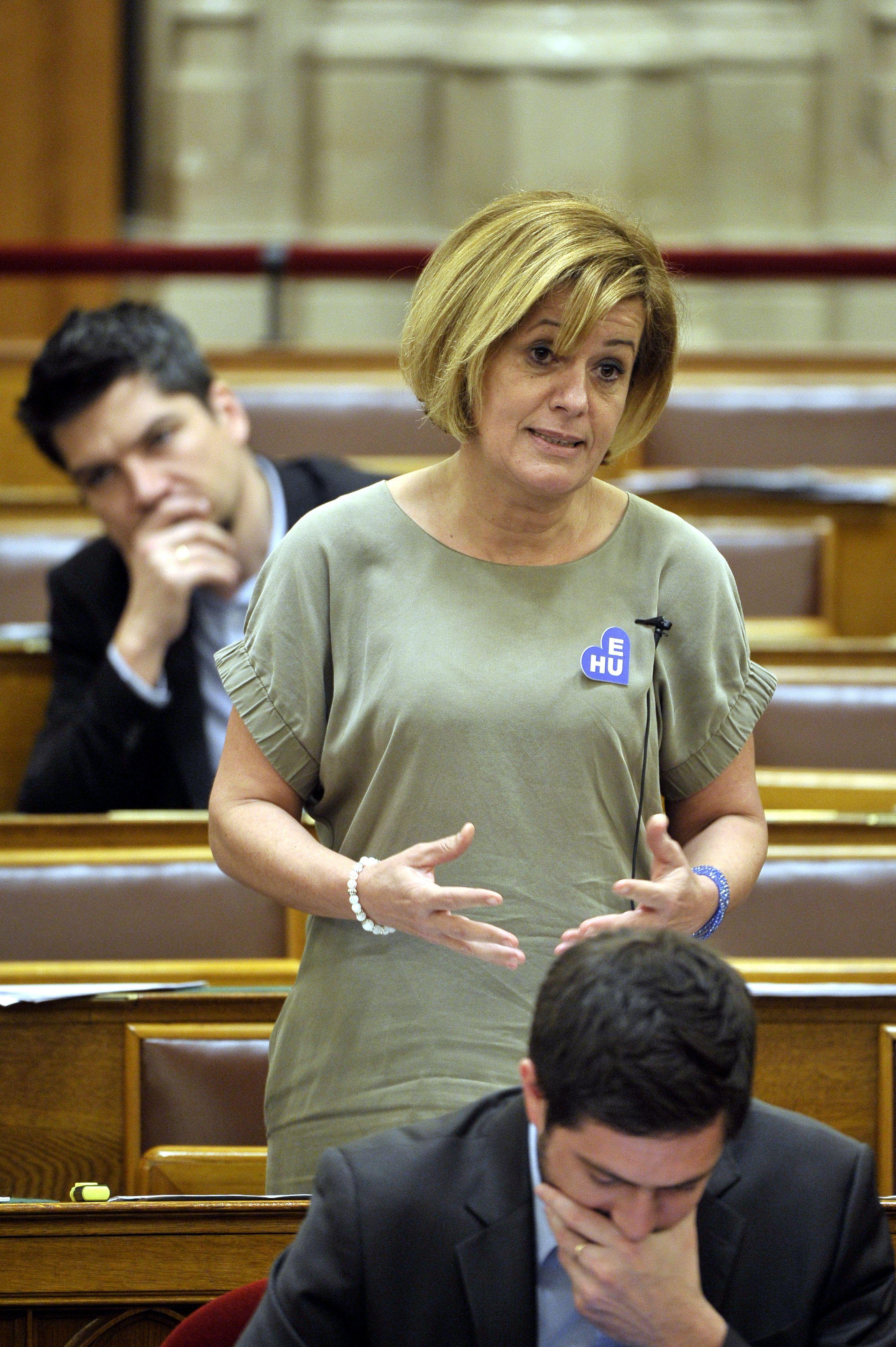 Az MSZP-s Bangóné közölte, hogy meg sem fordult a fejében, hogy a Fidesz-szavazók patkányok