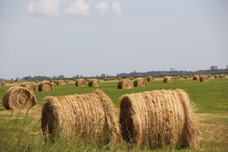 Bevándorlóknak adja az EU az agrárpénzt – ezzel ijeszteget a kormány