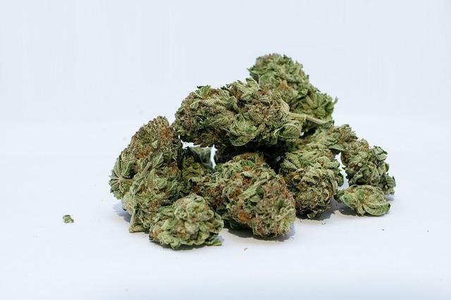 Kanada legalizálta a marihuánát