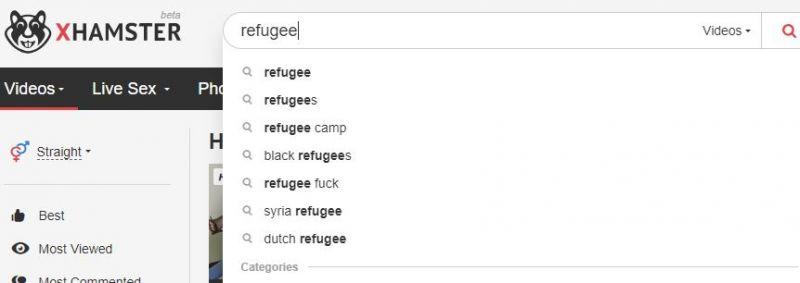 Több tízezer magyar kíváncsi menekültpornóra (18+)