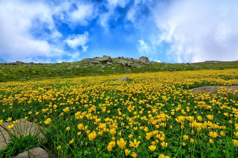 Ma kiélvezheti a tökéletes tavaszi nap minden pillanatát