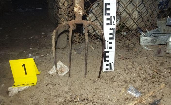 """Kegyetlen – állatkínzót kaptak el Debrecenben – vasvillával ölt a férfi, mert """"ideges lett az állatra"""""""
