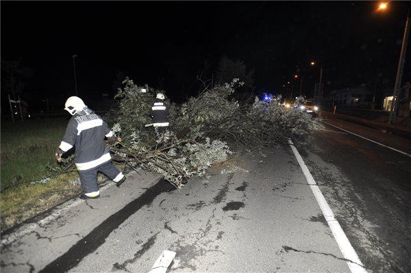 Kidőlt fák, leszakadt felsővezetékek, vízzel elöntött pincék: Brutális viharok csaptak le Magyarország egyes részein és még nincs vége – fotó