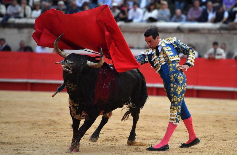 """""""A kínzás nem kultúra"""": betiltanák a bikaviadalokat Spanyolországban"""