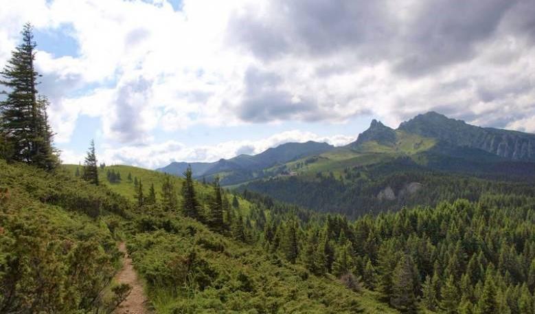 Nemzetközi bíróságokhoz fordulnak Bánffy Dániel örökösei a román állam által újból államosított erdőtulajdon ügyében