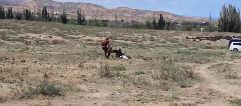 Videó: megtámadta a sas a kirgiz kislányt