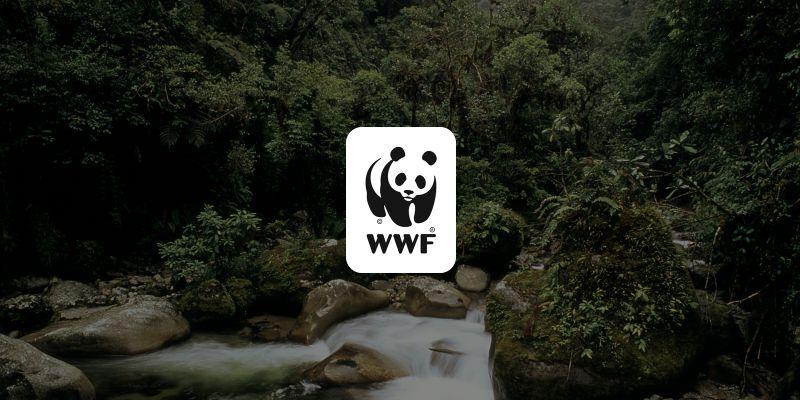 Tizennyolc ország vett részt a WWF Nagy Ugrás nevű természetvédelmi akciójában