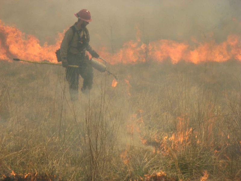 Vajon kitalálja, mennyit keres egy tűzoltó 10 évnél kevesebb szolgálati viszonnyal?