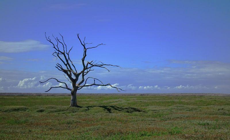 Geológus: a világ politikai vezetői nem veszik komolyan a globális felmelegedést