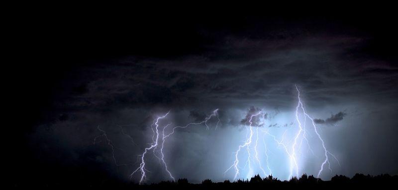 Fákat döntött ki a vihar Nyíregyházán és környékén