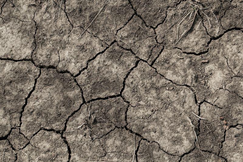 A hőhullámok jelentik a legsúlyosabb egészségügyi kockázatot