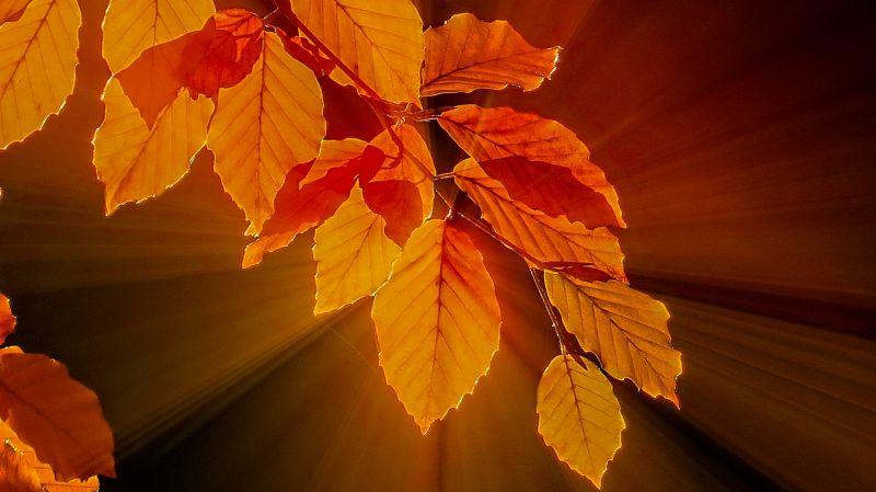Évtizedek óta nem volt ilyen őszi meleg Magyarországon