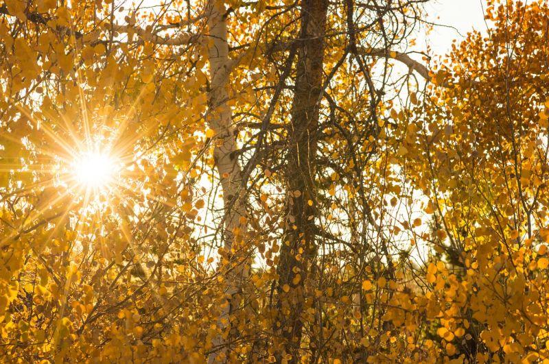 Szép idővel búcsúzik az október