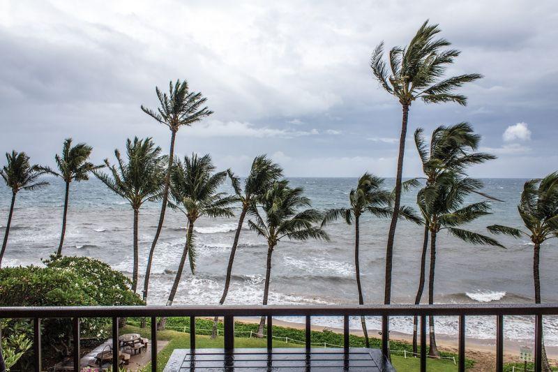 Rendkívüli állapotot hirdettek Floridában: minden korábbinál nagyobb pusztítást okozhat a Michael hurrikán
