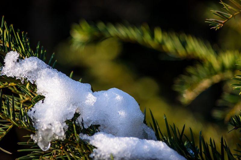 Végnapjait éli a decemberi hótakaró – nyakunkon az enyhülés