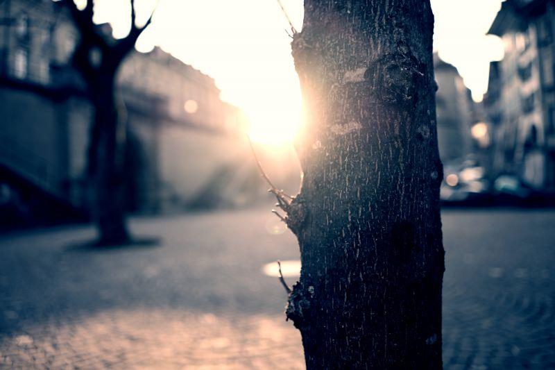 A következő napokban tovább melegszik az idő