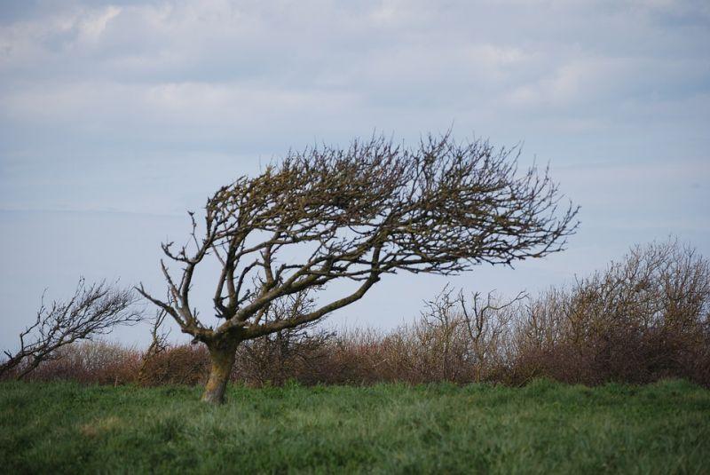 Megdőlt a napi szélrekord, kiadták a figyelmeztetést több megyére