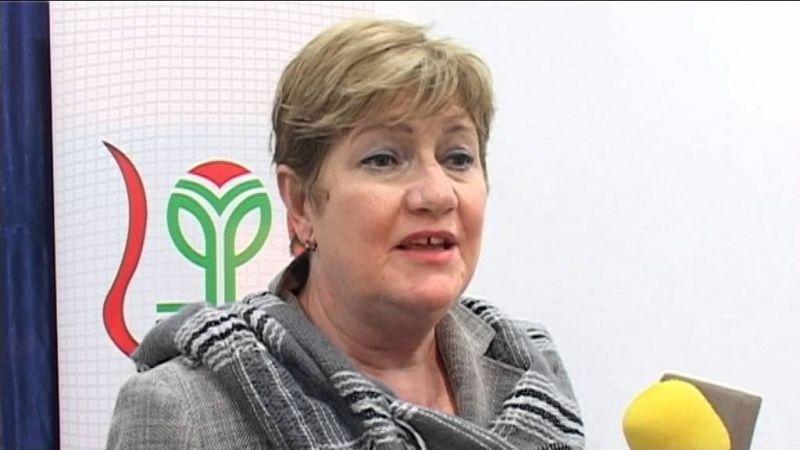 Szili Katalin: javul a magyar gazdaság helyzete, tudjuk támogatni a határon túli magyarokat is