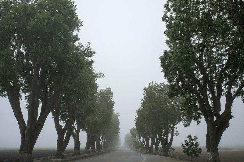 Ködös, szeles nappal búcsúzik a hét