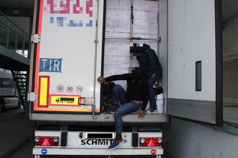 Öt meglepetést is rejtett egy kamion Röszkénél