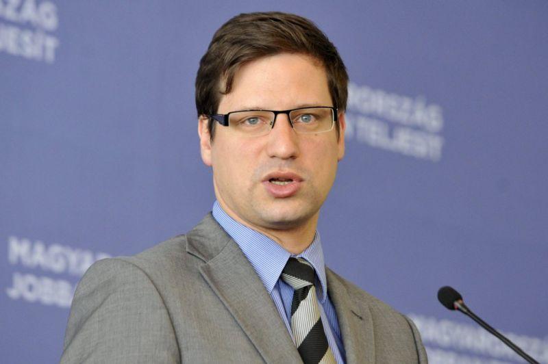 Gulyás Gergely: a Fidesz erős, egységes, kereszténydemokrata, a bevándorlást elutasító néppártot szeretne