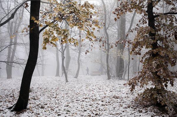A téli hónapokban sem hullott elég csapadék – mi lesz itt nyáron?