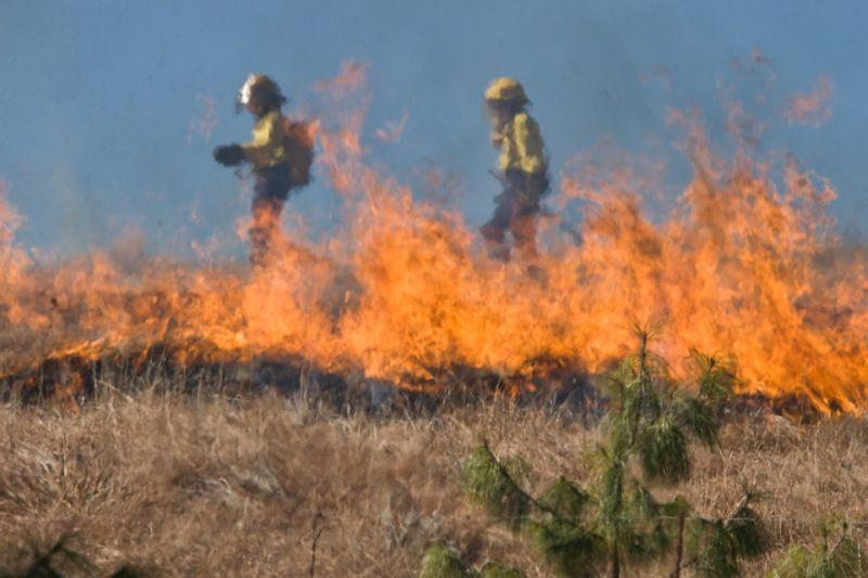 Fittyet hányunk a tilalomra – február közepe mintegy 2000 szabadtéri tűzhöz riasztották a tűzoltókat