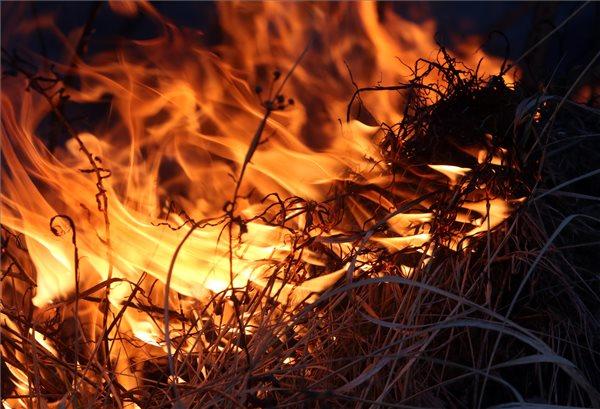 Hatalmas lángok csaptak fel Sajókeresztúr mellett – fotók