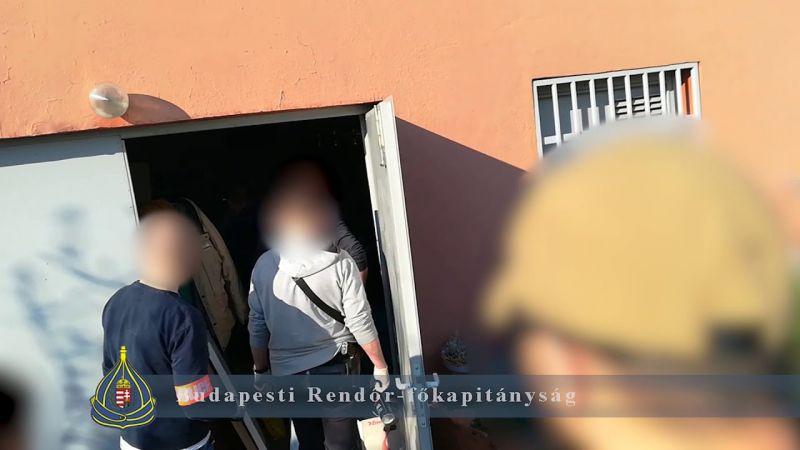 Professzionálisan felszerelt kenderfarmot találtak egy érdi pincében – videó