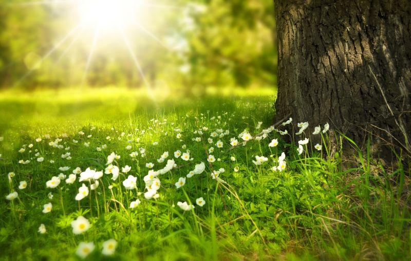 Kegyes az időjárás, vasárnap újra ránk süt a nap!