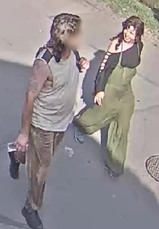 Kockaköves teknős-gyilkos: a rendőrség nyilvánosságra hozta a zöld overallos nő fotóit