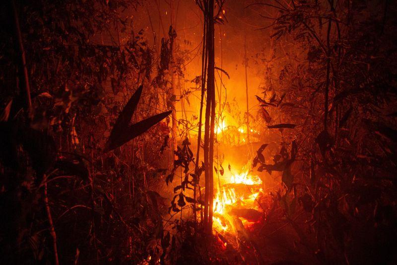 Összefognak a leggazdagabb országok az amazonasi tűzvész megfékezése érdekében