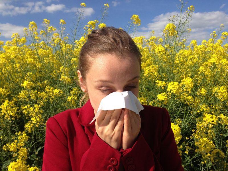 Semmi jóra ne számítsanak az allergiások – ez vár rájuk